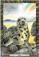 Druid Animal Oracle Seal